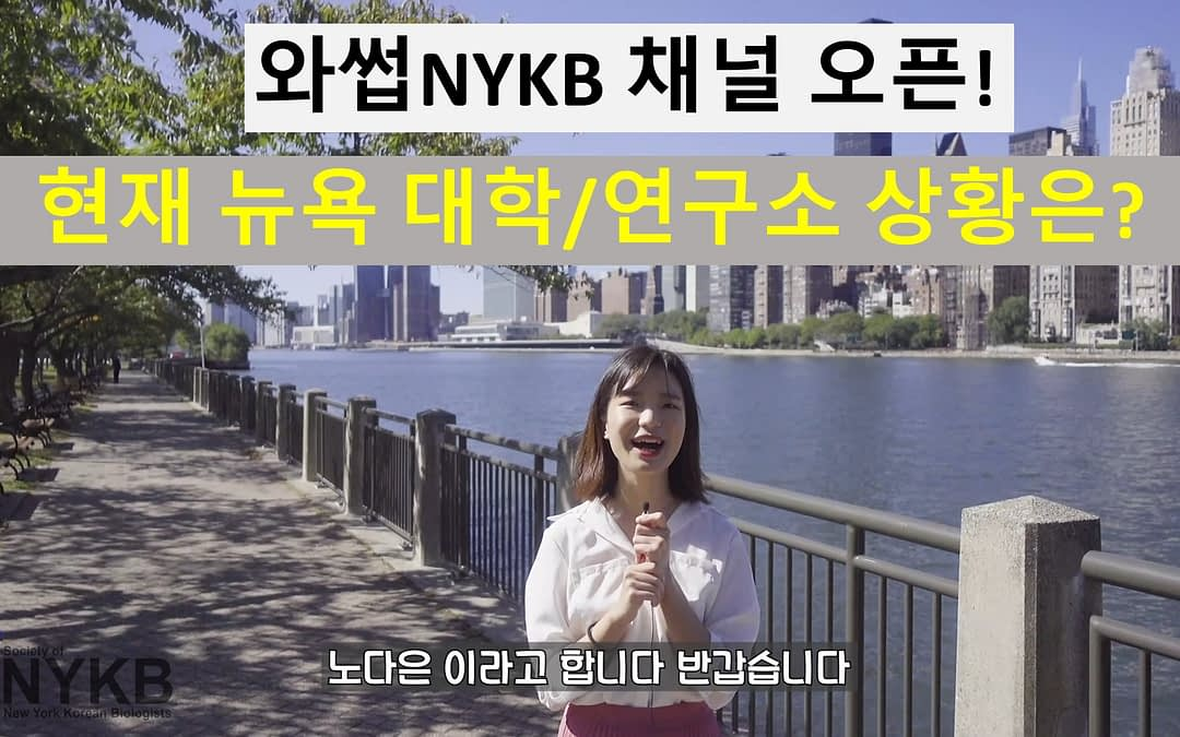 NYKB 유튜브 채널 오픈 [와썹NYKB]